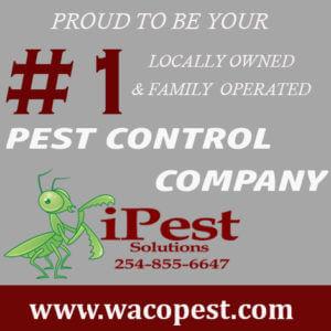 waco_texas_pest_control_#1 pest control