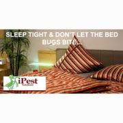 bed_bug_waco_texas_facebook