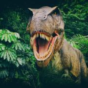 75037309 – dinosour